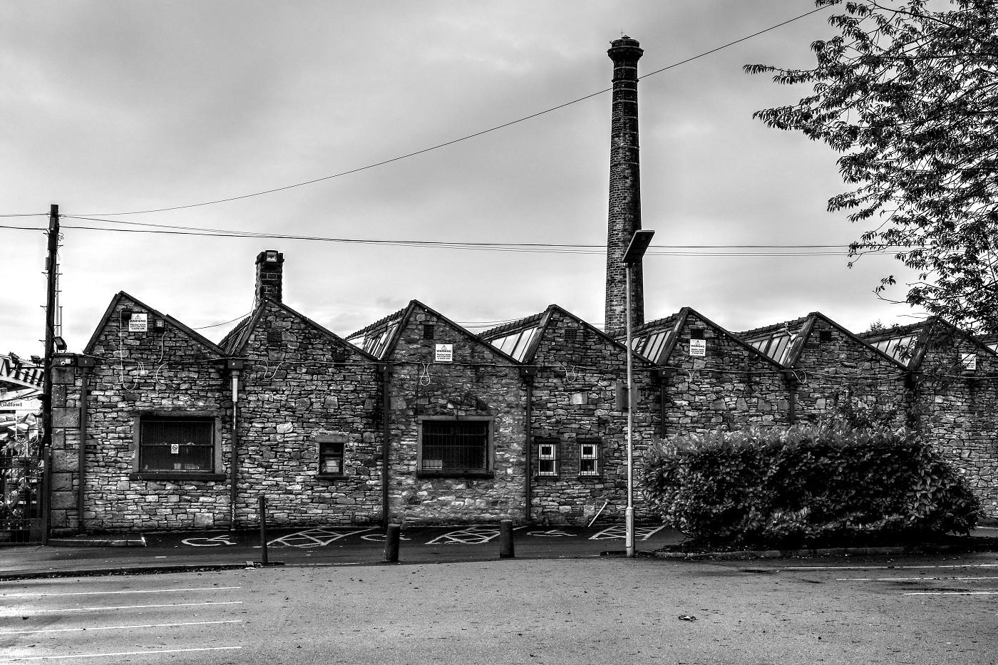 ossy-mills-6702.jpg